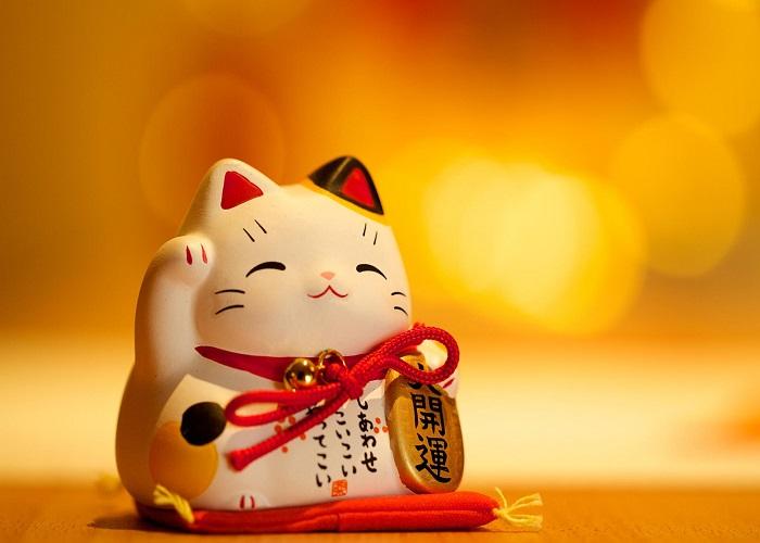 8 kiểu mèo may mắn bán chạy nhất 2019 -2020
