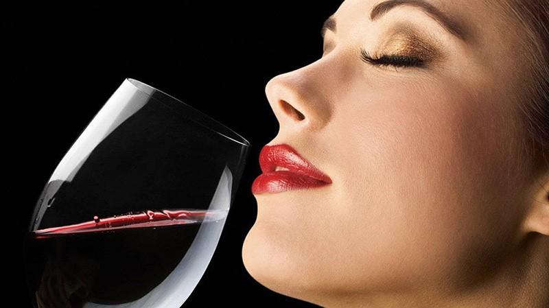Top 5 Chai Rượu Vang Tốt Cho Sức Khỏe Giá Dưới 1 Triệu